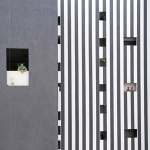 Zebra façade