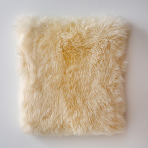 Veronica Sheep's pelt