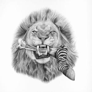African Lion ( Panthera Leo )