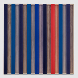 Untitled (Red and Blue banded hovering thread)