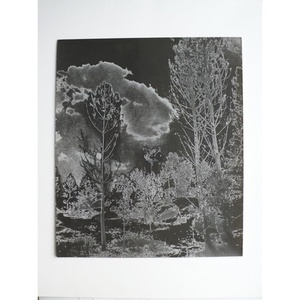 Solarised Landscape (1)