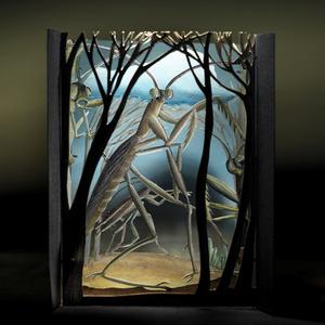 Mantis Diorama