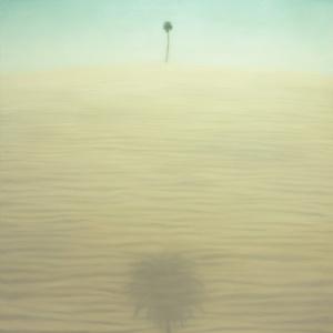 Sabbia Albero ed Ombra