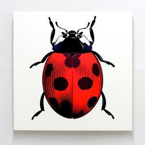 Lumina Ladybug