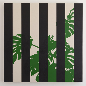 Monstera Deliciosa (Black)