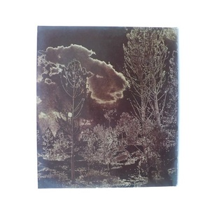 Solarised Landscape (2)