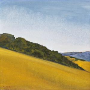 """""""Grassy Hillside"""""""