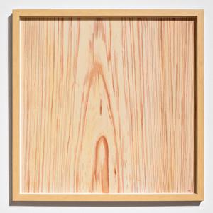 Wood Veneer IV