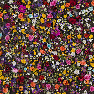 Floral Fabric No.8