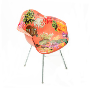 Genus Chairs (Coral Chair)