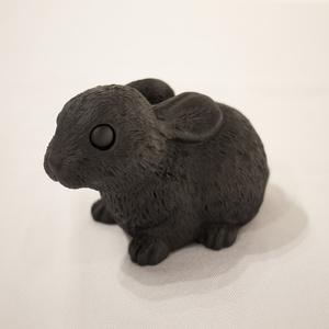 Black Bunny (Lying)