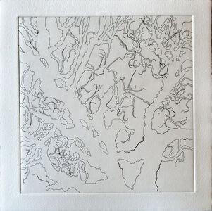 Tree Series: Normana I