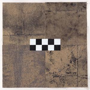 Untitled 10 (Fieldwork Series)