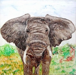 "Elephant in the Wild (dimensions provided are framed) (unframed: 6"" x 6"")"