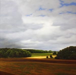 Flemish Fields