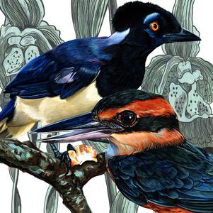 Endangered Bird #164