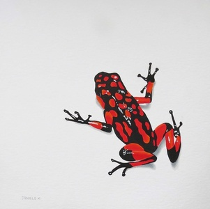 Poison Series, Red Frog