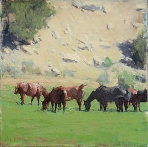 Canyon Horses I