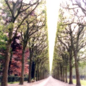 Parc de Sceaux, France (4-07-6c-9)