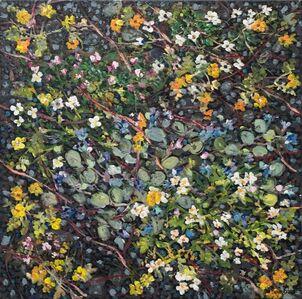 Vegetation - Surtsey