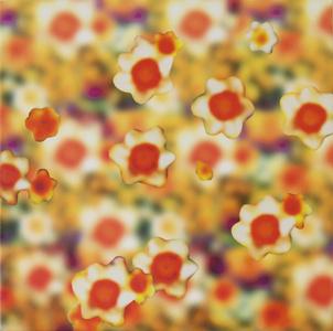 Daffodil Blur #22