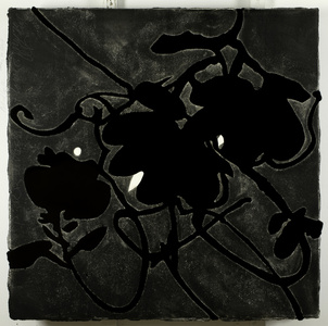 Black Lantern Flowers May 20, 2009