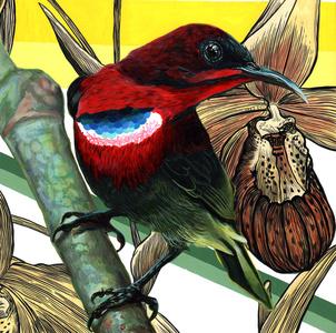 Endangered Bird #163