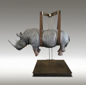 Rhino Sospeso