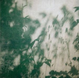 Walled Garden IV