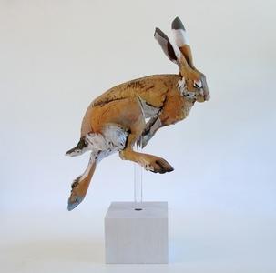 Fleet Hare v