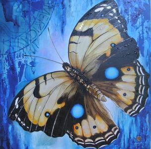 Blue Dot Butterfly