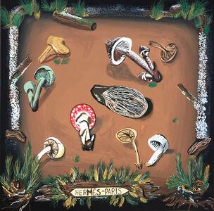 Hermès Mushrooms
