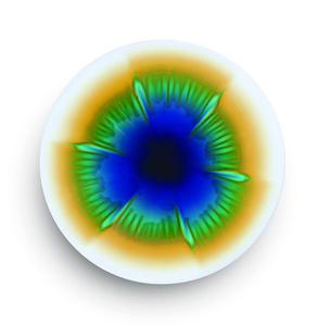 Plate Kamon (Floral)