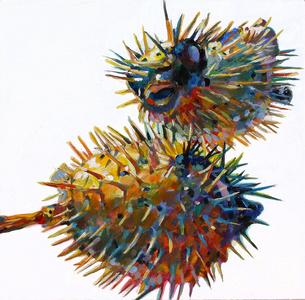 Two Blowfish