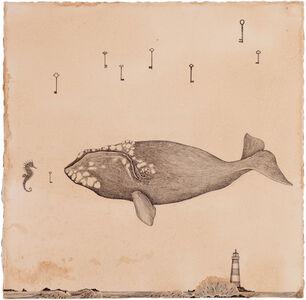 La balena e il cavalluccio
