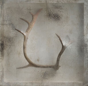 Remnant (Caribou Antler)
