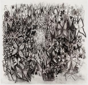 Untitled (Butterflies 2)