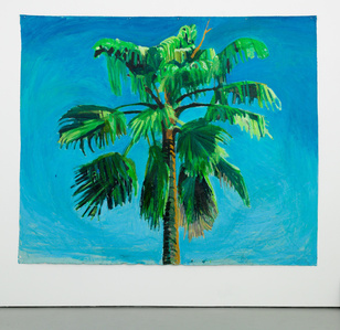 Sky and Palm Tree Head #5