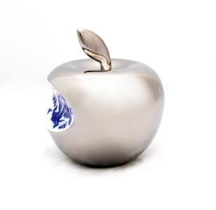 Apple - Sliver 2013