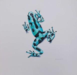 Poison Series, Dardo Frog