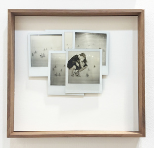 Polaroid edits