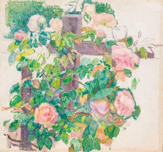 Roses Grimpantes