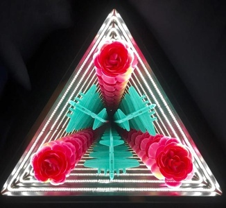 Triangle Roses and Planes