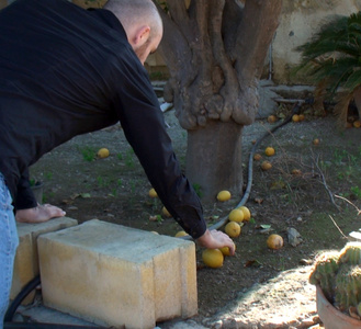Exchanging Lemons in Lefkosia and Lefkoşa