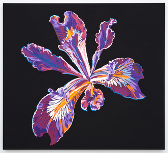 Vortex Flower (iris)