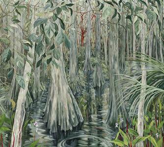 Gumbo Limbo - Everglades