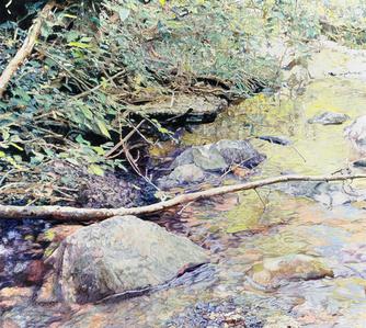 Saratoga Stream