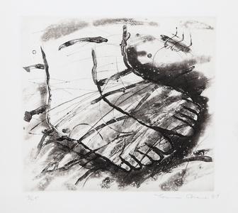 Feet (Black and White)