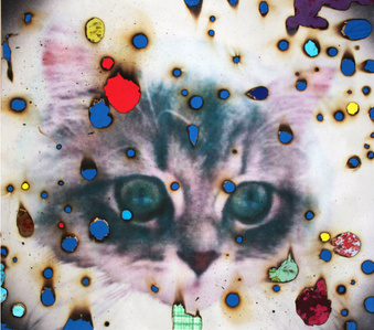 I ♥ Kitties [blue]