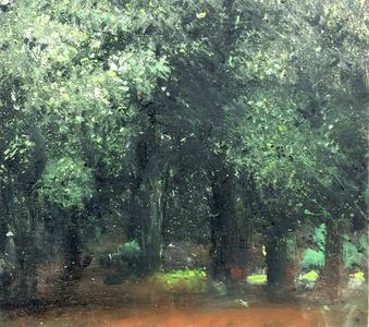 In between trees